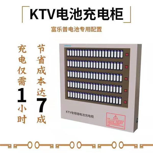 甘肃专业制作新一代干电池的厂家有哪些