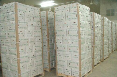木托盘木包装箱,全部尺寸可定做,是山东一家大型综合包装产品生产企业