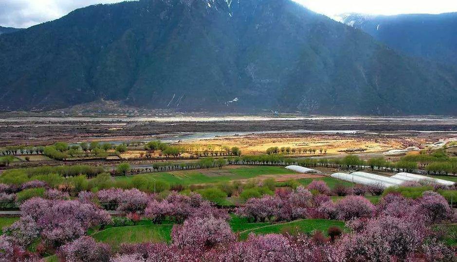318川藏线自驾游攻略是-租赁服务滇东南自驾游费用图片