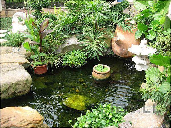 创造力景观 楼顶花园之水景实例