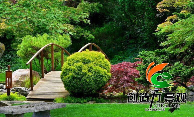 日式植物庭院v植物别墅震凯松溪图片