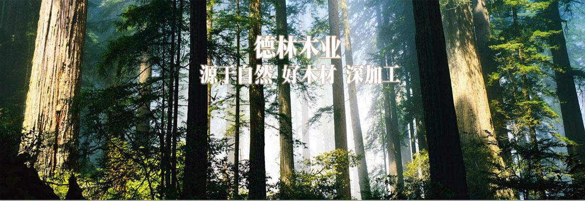 鹤山市鹤城镇德林胶合板厂  网站首页  新闻资讯  产品中心  关于