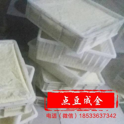 豆腐技术500