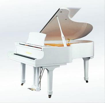 钢琴普遍用于独奏,重奏,伴奏等演出,作曲和排练音乐十分方便.