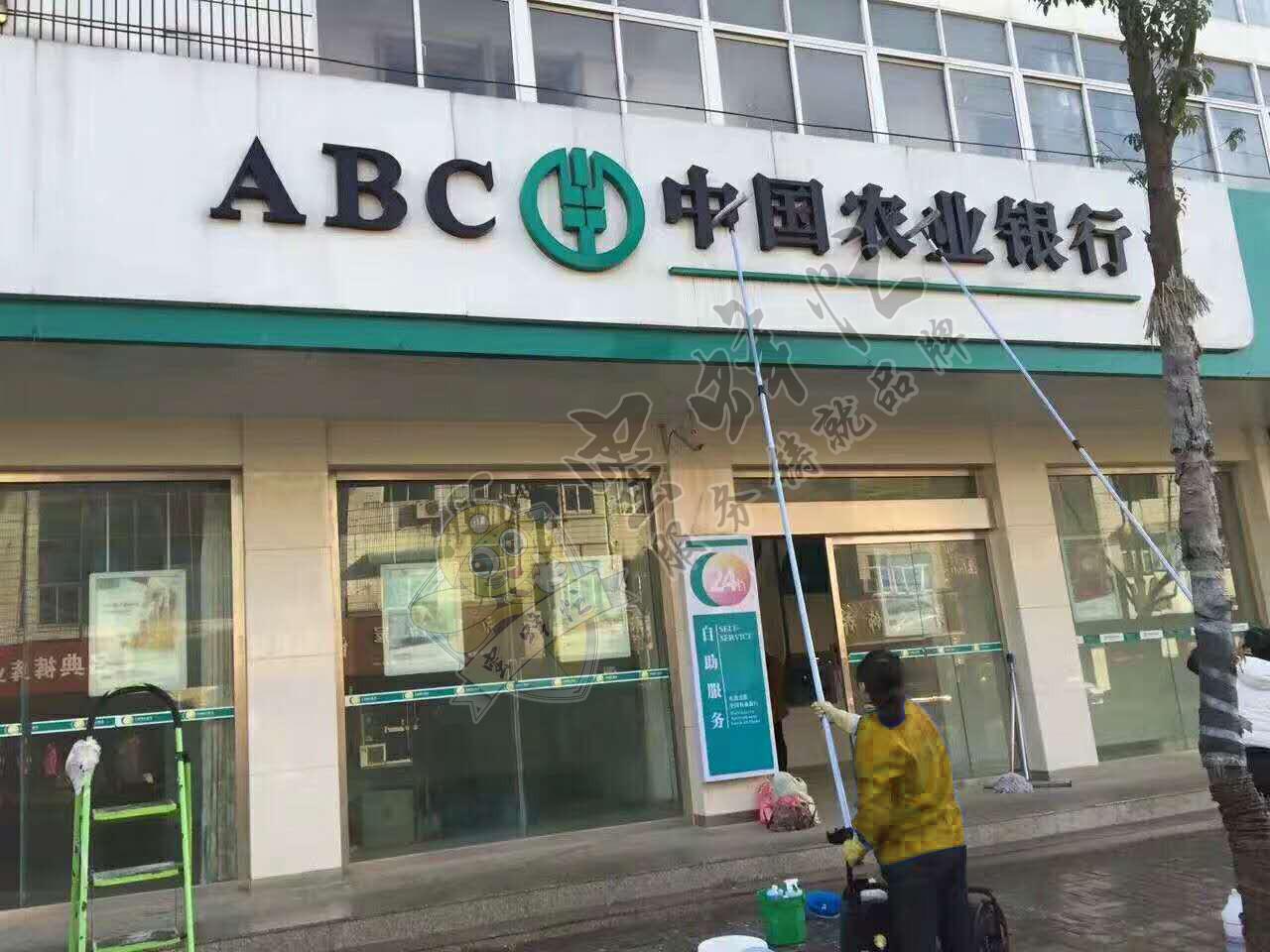 陕西家电清洗公司加盟 小蜜蜂无限商机,让创业者赚取一个亿图片 243491 1280x960