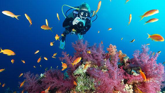 水肺潜水培训指南 海龙潜水会教学专业