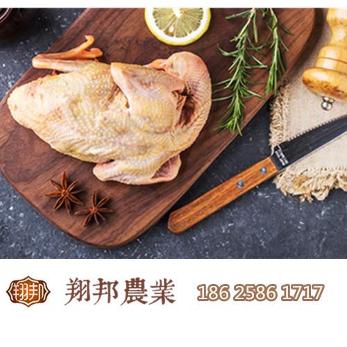 翔邦谷鸽鸽子肉吃法介绍