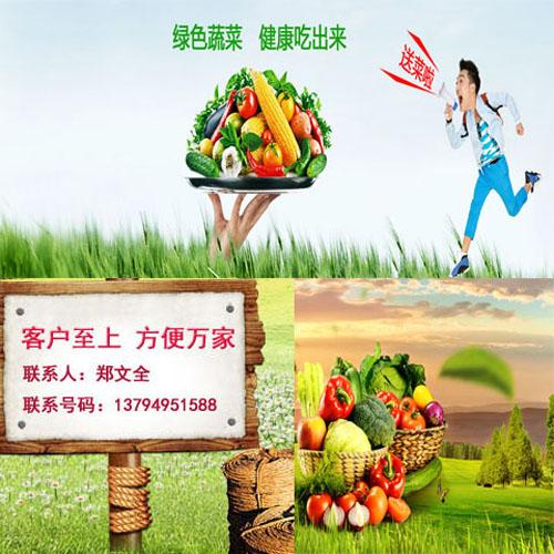 樟木头大型的蔬菜生鲜配送价格安全放心