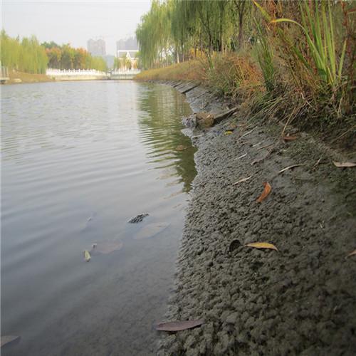 河道护坡坡道