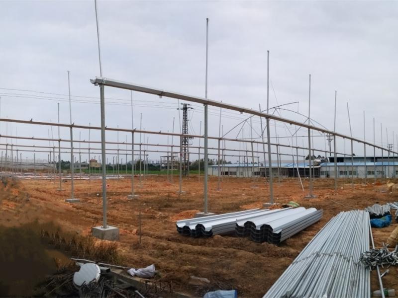 梅州星凯农科温室大棚搭建,优质商家,值得信赖