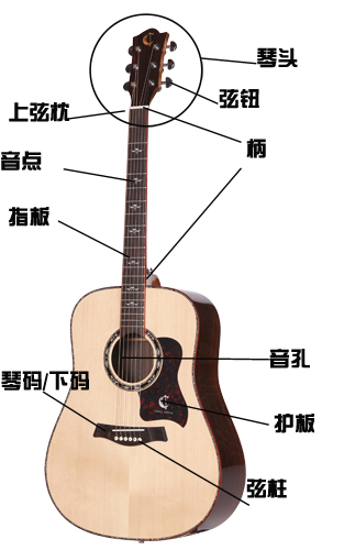 吉他根据不同的结构和发声原理可以大致分为木吉他(如古典吉他,钢弦
