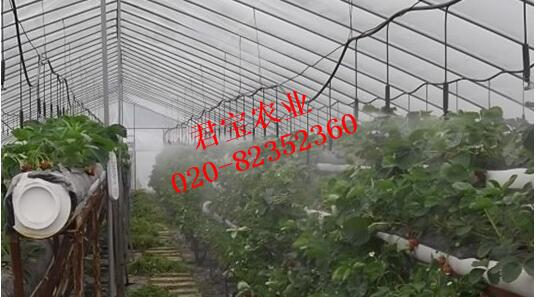 江西微喷设备产品温室蔬菜大棚微喷设备
