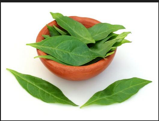 海娜粉是采用散沫花植物的叶片经过晾晒烘干脱水,粉碎磨制的粉末.
