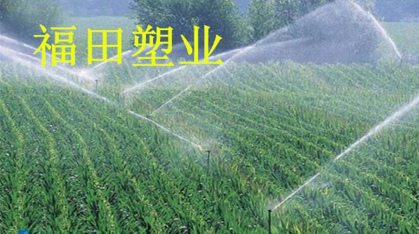 山区农业节水灌溉已经提上日程,玉米大田喷灌方法正在实施中