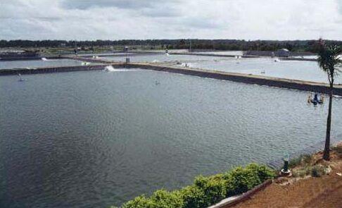 最新产品【池塘水产养殖膜】图片