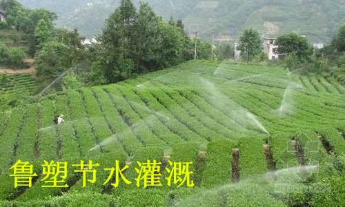镇江节水灌溉重要性 农田灌溉应淘汰沟渠灌溉方式