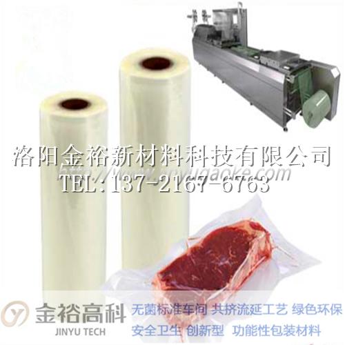 广元PA-PP蒸煮膜制造工艺