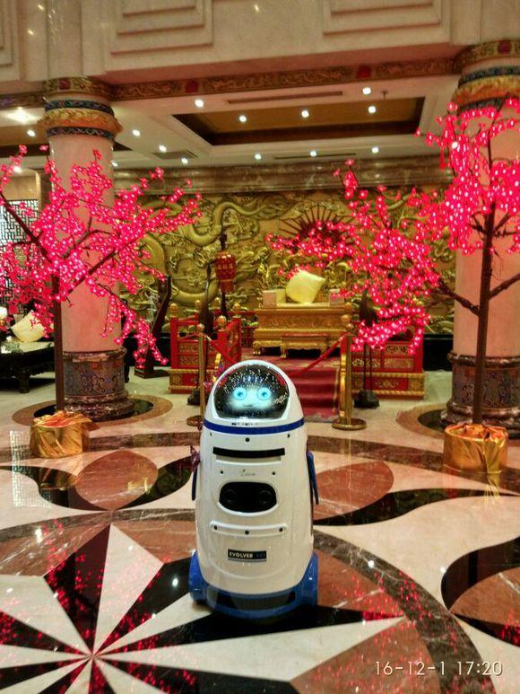 保姆机器人经销商 小胖机器人厂家