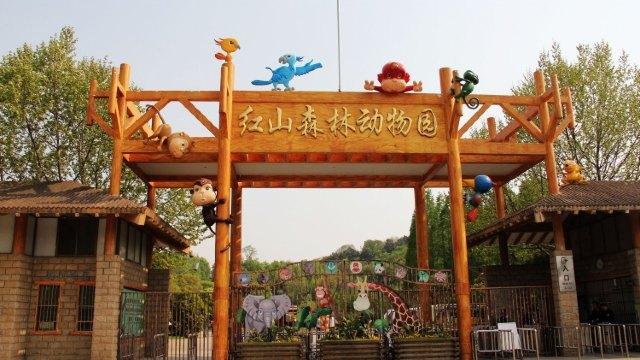 红山森林动物园位于城北的红山,东眺紫金山,西靠南京火车站,南临玄武湖,北望幕府山,占地68公倾。园内地形起伏,曲径通幽。树丛中分布着鸟类区、猛兽区、灵长类区、大型食草动物区和大型动物表演场、动物摄影场、儿童动物园、狮虎山等37个场馆,依山就势,布局奇巧。来红山森林动物园观看各种动物,感受大自然的独特魅力! 5、龙港乐园