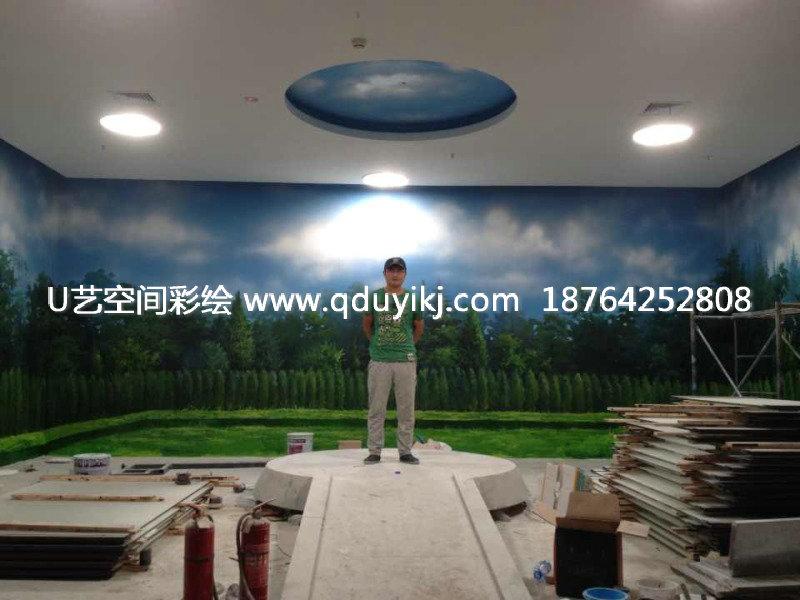 手绘壁画,墙面彩绘,3d立体画, 装饰画配画等业务,室内室外墙体大小不