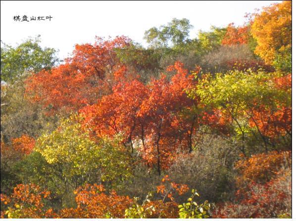 赞皇棋盘山旅游开发-十月一出行的好去处-棋盘山在哪?