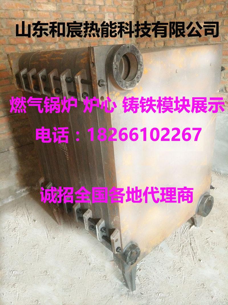 高品质 长寿命的燃气锅炉来源于和宸铸铁模块燃气锅炉
