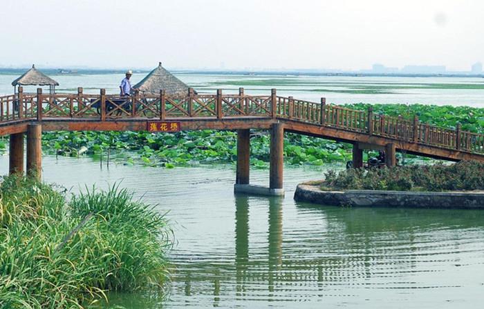 上海到阳澄湖一日游   阳澄湖 旅游   苏州莲花岛景区