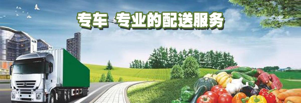 yun-banner1