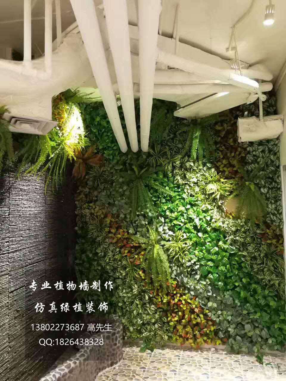 东莞仿真植物墙 仿真植物绿植装饰设计选晟铭设计