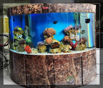 湘潭海水鱼缸水族箱设计定做公司