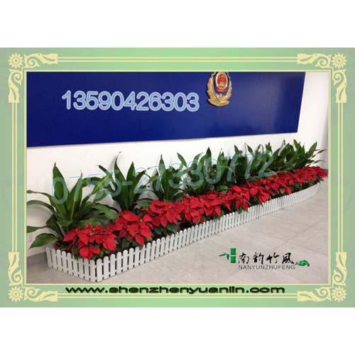 深圳优惠的园林绿化施工服务商