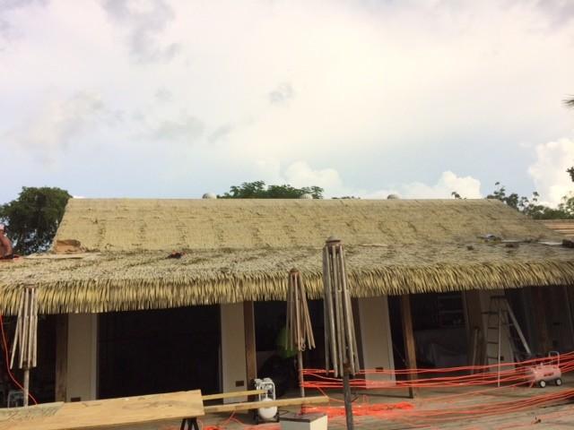 PVC茅草,PE茅草等屋面材料景观材料图片