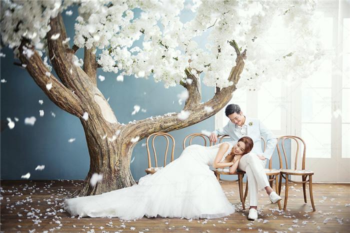 大气唯美的韩式婚纱照