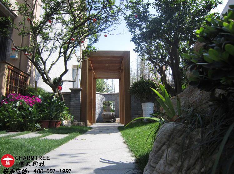 南京欧式庭院景观哪家设计美图片