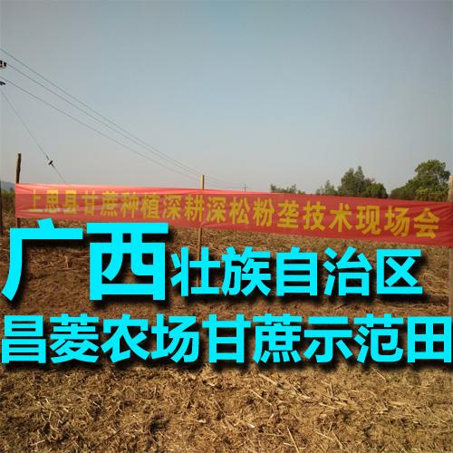 广西上思县昌菱农场甘蔗豪享博场国际