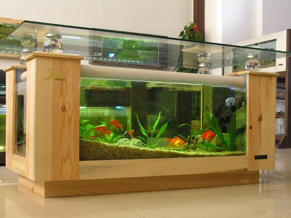 鱼缸,基于当前最革命性的设计,并融合了生态净化系统,循环过滤系统