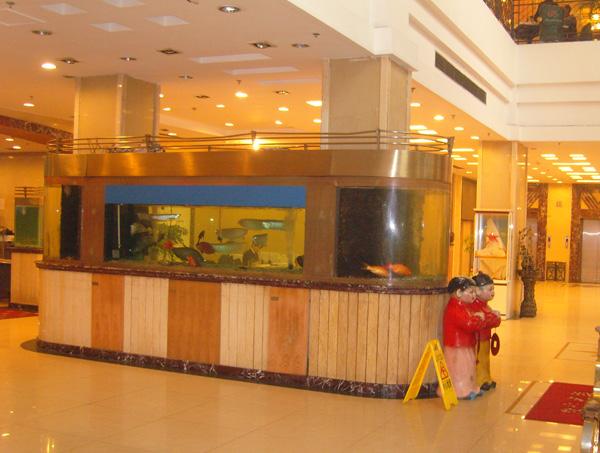 酒店海鲜池_武汉大型酒店海鲜池哪家好
