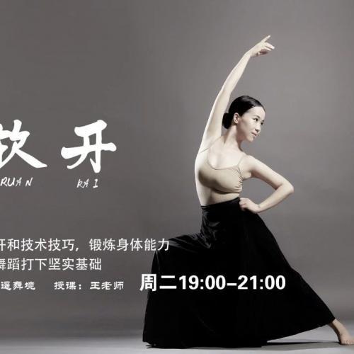 逍遥舞境古典舞软开度训练课-帮你打开身体软度