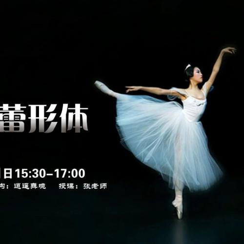 逍遥舞境-芭蕾形体课-塑造形体美气质美