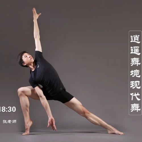 成年舞蹈培训现代舞课-现代舞青年大师授课
