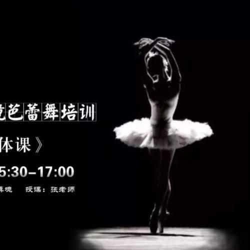 逍遥舞境周末芭蕾形体课-塑型提气质