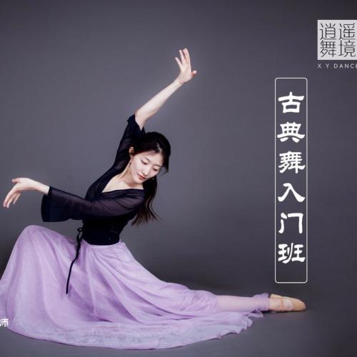 逍遥舞境古典舞入门班-带领零基础学员了解古典舞