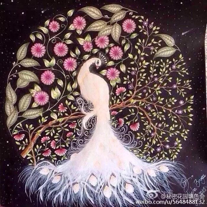 《秘密花园》涂色作品欣赏