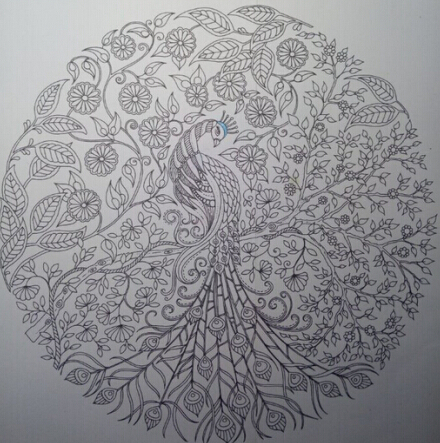 秘密花园手绘涂色孔雀的画法步骤展示