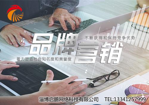 临淄专业网站制作、网站建设,就选淄博启鹏网络