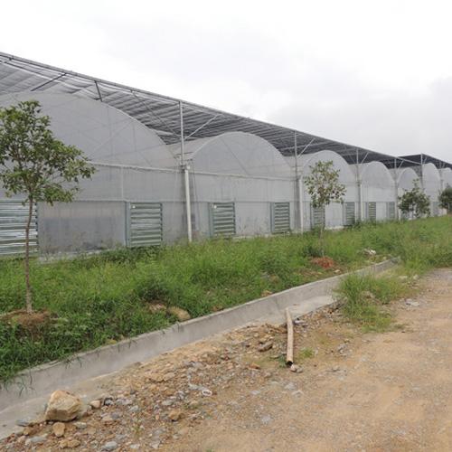 湖南特价PC板温室生产厂家