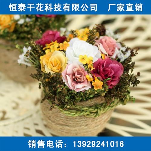 深圳干花出口价格