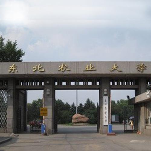 东北农业大学 - 扬子晚报