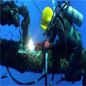 壁纸 海底 海底世界 海洋馆 水族馆 300_300