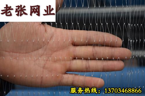渔网的种类有哪些?安阳老张网业提供优质渔网,专业渔网生产厂家